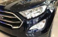 Bán Ford Ecosport giá chỉ từ 545 triệu + gói KM phụ kiện hấp dẫn, Mr Nam 0934224438 - 0963468416 giá 545 triệu tại Thái Bình