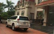 Bán xe Toyota Prado 2010, màu bạc, chính chủ giá 1 tỷ 100 tr tại Bắc Ninh