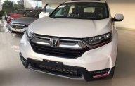 Bán ô tô Honda CR V năm 2019, màu bạc, nhập khẩu nguyên chiếc giá 1 tỷ 23 tr tại Tp.HCM
