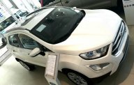 Bán Ford EcoSport Titanium 1.5L đời 2019, màu trắng, giá sốc cuối năm giá 590 triệu tại Vĩnh Long