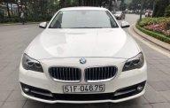 Bán BMW 5 Series 520i 2014, màu trắng giá 1 tỷ 450 tr tại Hà Nội