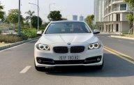 Cần bán xe BMW 5 Series 520i đời 2015, màu trắng, nhập khẩu giá 1 tỷ 410 tr tại Tp.HCM