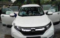 Cần bán lại xe Honda CR V 2018, màu trắng, nhập khẩu  giá 1 tỷ 10 tr tại Thái Bình