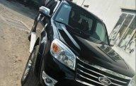Cần bán Ford Everest AT năm sản xuất 2010, màu đen  giá 495 triệu tại Tp.HCM