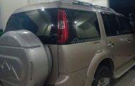 Bán Ford Everest AT sản xuất 2010, xe nhập chính chủ, giá 510tr giá 510 triệu tại Bình Dương