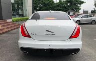 Bán ô tô Jaguar XJ series L Portfolio đời 2019, màu trắng, xe nhập giá 6 tỷ 539 tr tại Hà Nội