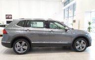 Bán ô tô Volkswagen Tiguan G đời 2019, màu xám, nhập khẩu chính hãng giá 1 tỷ 729 tr tại Tp.HCM