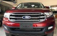 Bán ô tô Ford Everest 2.0 Ambient sản xuất năm 2019 giá 929 triệu tại Tp.HCM