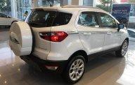 Ford EcoSport số sàn, giá tốt nhất giá 515 triệu tại Tp.HCM