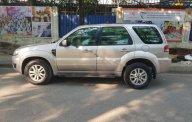 Bán Ford Escape XLT năm sản xuất 2009, màu bạc, nhập khẩu  giá 355 triệu tại Hà Nội