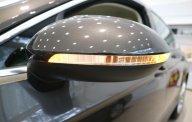 Bán Passat Bluemotion 4 chỗ nhập Đức, giao ngay giá 1 tỷ 480 tr tại Tp.HCM