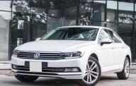 Bán xe Volkswagen Passat High - Nhập khẩu và bảo hành chính hãng/ hotline: 0908988862 giá 1 tỷ 480 tr tại Tp.HCM