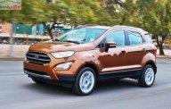 Bán Ford EcoSport năm 2019, nhập khẩu nguyên chiếc, 689tr giá 689 triệu tại Tp.HCM