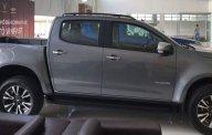 Bán Chevrolet Colorado sản xuất 2019, màu xám, nhập khẩu giá 739 triệu tại Tp.HCM