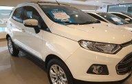 Cần bán Ford EcoSport Titanium 2016, màu trắng giá 479 triệu tại Tp.HCM