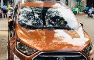 Bán lại Ford EcoSport đời 2018, xe chính chủ, 610tr giá 610 triệu tại Tp.HCM