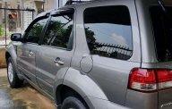 Bán xe Ford Escape sản xuất năm 2010, màu bạc, giá 375tr giá 375 triệu tại Tp.HCM