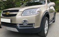 Cần bán xe Chevrolet Captiva LTZ máy dầu, hàng hiếm sản xuất năm 2009, màu vàng giá 399 triệu tại Tp.HCM