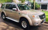Bán Ford Everest sản xuất 2009, màu vàng giá 415 triệu tại Tp.HCM