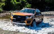 Bán xe Ford Ranger đời 2019, nhập khẩu giá Giá thỏa thuận tại Tp.HCM