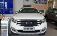 Bán Ford Everest đời 2019, màu trắng, xe nhập, 300 triệu giá Giá thỏa thuận tại Đà Nẵng