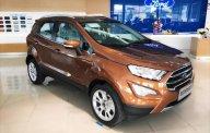Cần bán Ford EcoSport đời 2019, giá cạnh tranh giá 587 triệu tại Hà Nội