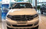 Bán xe Ford Everest Titanium 2.0L 4x4 AT sản xuất năm 2019, màu trắng, nhập khẩu giá 1 tỷ 329 tr tại Hà Nội