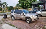 Bán Ford Escape 2009, số tự động giá 348 triệu tại Hải Dương