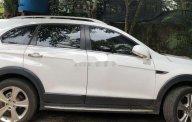 Bán xe cũ Chevrolet Captiva 2015, màu trắng, nhập khẩu giá 500 triệu tại Đắk Lắk