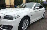 Bán BMW 520i sản xuất 2014, màu trắng, nhập khẩu   giá 1 tỷ 320 tr tại Hà Nội