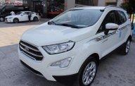 Cần bán Ford EcoSport Titanium 1.5 AT 2019, giá hấp dẫn giá 610 triệu tại Kiên Giang