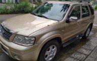 Bán Ford Escape 2.3 XLT năm sản xuất 2005, số tự động, giá tốt giá 230 triệu tại Tp.HCM