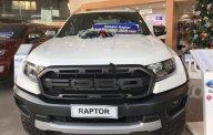 Bán Ford Ranger đời 2019, nhập khẩu nguyên chiếc giá 1 tỷ 198 tr tại Cần Thơ