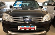 Bán xe Ford Escape XLT sản xuất năm 2009, giá 314 triệu giá 314 triệu tại Tp.HCM