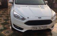 Cần bán lại xe Ford Focus đời 2019, màu trắng, nhập khẩu nguyên chiếc giá 575 triệu tại Thái Nguyên