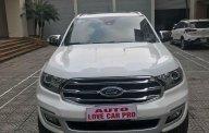 Cần bán xe Ford Everest năm 2019, màu trắng, xe nhập giá 1 tỷ 300 tr tại Hà Nội
