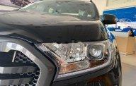 Bán xe Ford Ranger Wildtrak năm 2020, màu đen, nhập khẩu nguyên chiếc giá Giá thỏa thuận tại An Giang