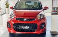 Cần bán xe Kia Morning năm sản xuất 2020, màu đỏ, nhập khẩu nguyên chiếc giá 388 triệu tại Cần Thơ