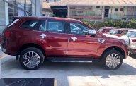 Ford Everest 2020 khuyến mãi giảm tiền mặt + tặng phụ kiện lên đến 80tr giá 1 tỷ 111 tr tại Tp.HCM