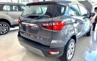 Siêu khuyến mãi xe Ford EcoSport 2020  giá thấp nhất giá 646 triệu tại Tp.HCM