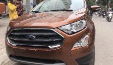 Ford Ecosport 2018 giá tốt nhất cùng nhiều phần quà hấp dẫn giá 545 triệu tại Tp.HCM