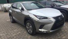 Bán xe Lexus NX 300 sản xuất 2018, màu bạc, nhập khẩu giá 2 tỷ 439 tr tại Hà Nội