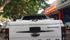 Bán ô tô Ford Ranger Wildtrak 3.2L 4x4 AT sản xuất 2015, màu trắng, nhập khẩu, 795tr giá 795 triệu tại Hà Nội