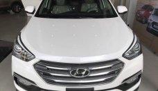Bán Hyundai Santafe màu trắng, Santafe bản đặc biệt, Santafe tại thành phố Hồ Chí Minh giá 1 tỷ 30 tr tại Hà Nội