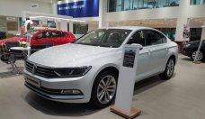 Bán xe Volkswagen Passat Blue Motion nhập khẩu, hỗ trợ trả góp 80% giá trị xe giá 1 tỷ 450 tr tại Tp.HCM