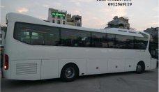 Bán xe Hyundai Universe Noble 47 chỗ Hồng Hà giá 2 tỷ 600 tr tại Hà Nội