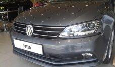 Bán Volkswagen Jetta chính hãng mới 100% - xe nhập khẩu giá 899 triệu tại Tp.HCM