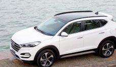Hyundai Tucson 2.0L, sx 2018, đủ màu giao ngay, gía tốt Sài Gòn giá 828 triệu tại Tp.HCM