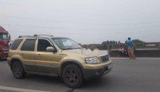 Cần bán lại xe Ford Escape XLT sản xuất năm 2005, giá tốt giá 220 triệu tại Hà Nội