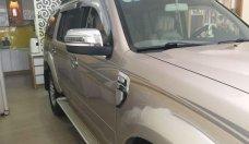 Bán xe Ford Everest đời 2009, xe còn rất đẹp giá 4 tỷ 900 tr tại Tp.HCM
